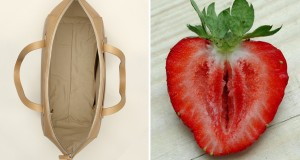 sliced-strawberry-purse-look-like-vaginas