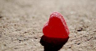 Amor sozinho